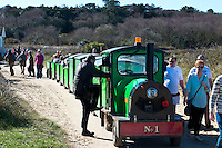 BNPS.co.uk (01202 558833)<br /> Pic: RachelAdams/BNPS<br /> <br /> The driver gets back on after dropping passengers off at Mudeford Spit. <br /> <br /> There was outrage today after a family that has run one of Britain's first 'Noddy' land trains for 46 years were served with a notice to quit the service.<br /> <br /> The much-loved novelty train that carries people to a remote beach was started in 1968 by the late Roger Faris, who hand-built the carriages himself.<br /> <br /> Since his death 34 years ago his widow Joyce, 88, has operated the independent service for 364 days a year and runs it more as a hobby than a profitable business.<br /> <br /> The little train has been used by generations of people and become a popular fixture at the Hengistbury Head beauty spot in Dorset.<br /> <br /> Now after five decades of service, town hall officials have told Mrs Faris they will not be renewing their contract with her as they intend to operate their own train service.