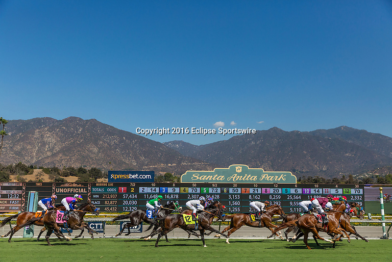 ARCADIA, CA - OCTOBER 01: Horses race over the newly renovated turf course at Santa Anita Park on October 01, 2016 in Arcadia, California. (Photo by Alex Evers/Eclipse Sportswire/Getty Images)
