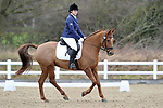 28/01/2018 - Class 1 - Prelim 17 - British Dressage - Brook Farm TC