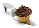 Chocolate Sour Cream Cupcake with Chocolate Buttercream - Portfolio only