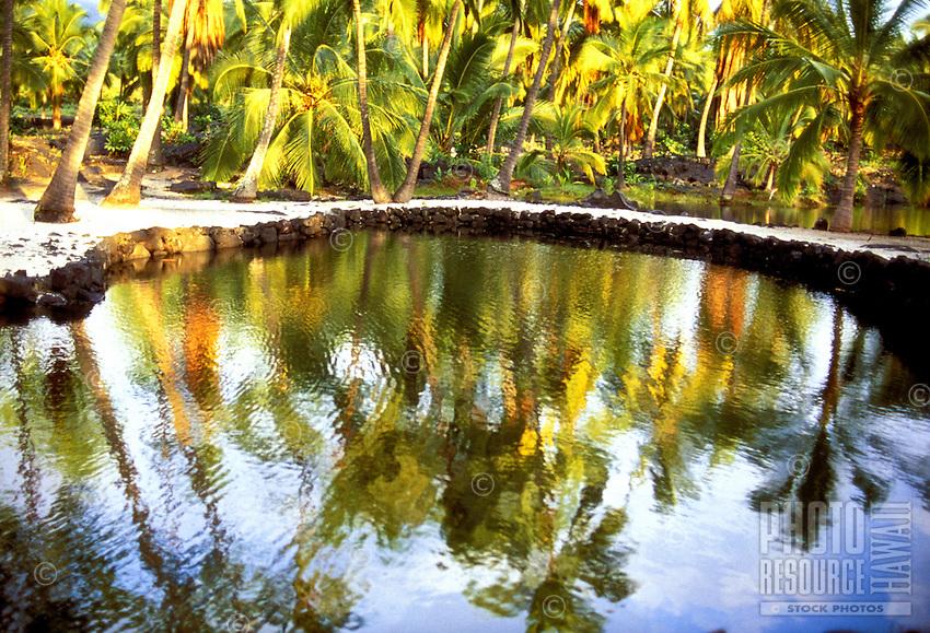 Palm trees reflecting on fish pond at Puu Honua O Honaunau National Historic Park (City of Refuge) on the Kona Coast of Hawaii.