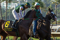 DEL MAR, CA. SEPTEMBER 4: #6 Bolt d'Oro  ridden by Corey Nakatani, in the post parade of the Del Mar Futurity (Grade l) on September 4, 2017, at Del Mar Thoroughbred Club in Del Mar, CA. (Photo by Casey Phillips/Eclipse Sportswire/Getty )