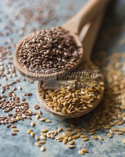 Gastronomie Génarale: Graines de Lin  bio // Organic flax seeds