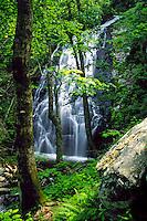 Crabtree Falls in wooded glade. North Carolina, off Blue Ridge parkway.