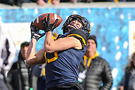 Morgantown, WV - November 10, 2018: West Virginia Mountaineers wide receiver David Sills V (13) catches the ball during the game between TCU and WVU at  Mountaineer Field at Milan Puskar Stadium in Morgantown, WV.  (Photo by Elliott Brown/Media Images International)