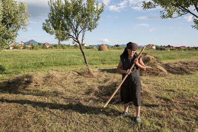 Maria Fane, 68 years, gather the hay from her backyard. Both kids moved abroad to work.