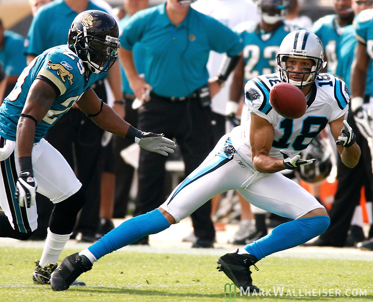 Carolina Panthers wide receiver Drew Carter (18) catches a Vinny Testaverde pass for short yardage against the Jaguars cornerback Brian Williams (29) in the 1st half of Jacksonville Jaguars vs Carolina Panthers NFL football game in Jacksonville, Florida December 9, 2007.