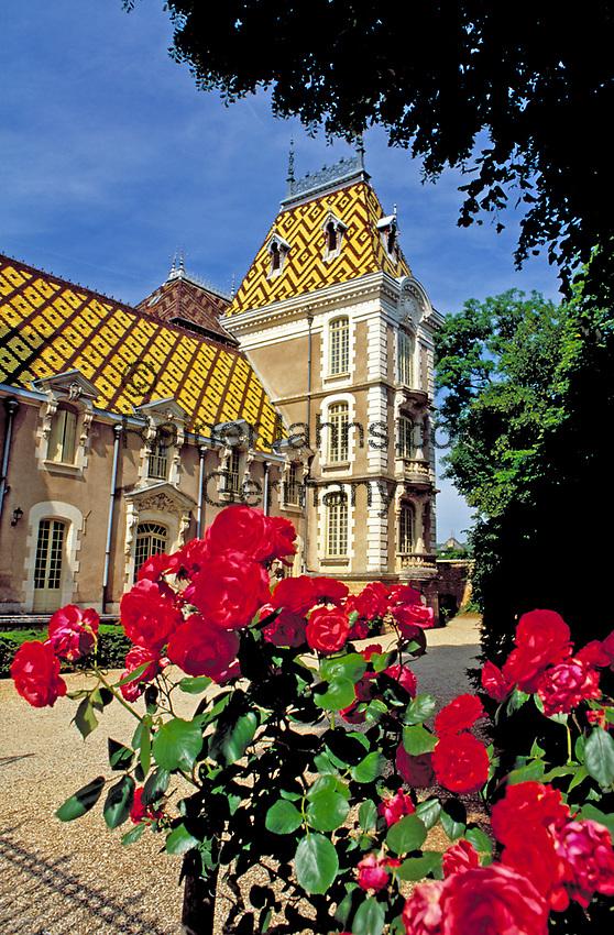 Frankreich, Burgund, Côte d'Or, Aloxe-Corton: Weingut und Schloss | France, Burgundy, Côte d'Or, Aloxe-Corton: vineyard and castle