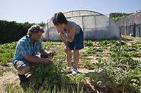 Europe/France/Rhône-Alpes/26/Drôme/Saint-Paul-Trois-Châteaux: Cédric Denaux et son épouse Cathy Restaurant L et Lui dans le jardin  ou Cathy cultive les légumes et  plantes aromatiques que Cédric utise en Cuisine