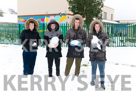 John Harrington, Martn O'Brien, Jack Aranzo and PaddyCoffey from Ballyspillane, Killarney enjoying the snow last Friday.