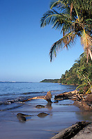 The Caribbean coastline in Cahuita National Park, Costa Rica