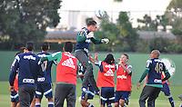 SÃO PAULO,SP, 25.05.2015 - FUTEBOL-PALMEIRAS - Jogadores do Palmeiras durante o treinamento do Palmeiras na Academia de Futebol, na Barra Funda zona oeste nesta segunda-feira, 25. (Foto: Bruno Ulivieri/Brazil Photo Press)