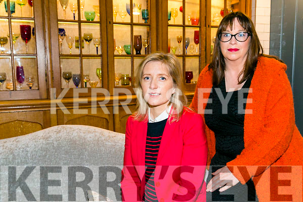 Sandra Rusk and Niamh Hanley  launch Weardrobe and Effigy fashion show in Aid of Recovery Haven  at the Ashe Hotel on Wednesday 12th October door open 7.30pm