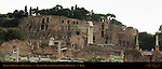 Domus Tiberiana Palatine Hill Forum Romanum Rome