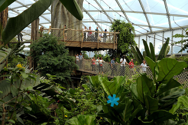 Opening of the the new words biggest tropical hall in Leipzig. Zoo-Director Joerg Junhold opened the hall called Gondwanaland this morning first time for visitors. in the picture: Foto: Alexander Bley