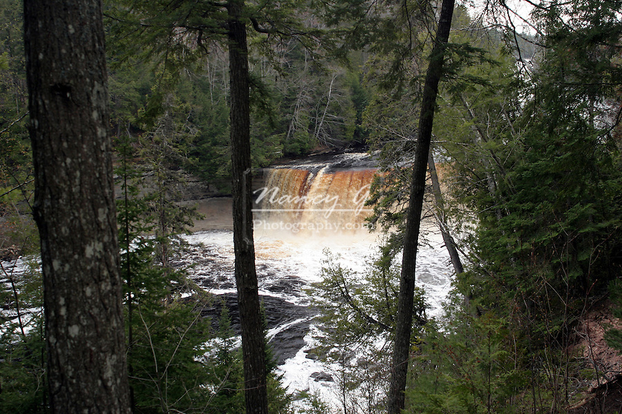 Upper Tahquamenon Falls in Upper Michigan.  Brown water tanic