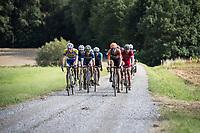 Race leaders: Walsleben, Mcnally, De Bondt, Van der Hoorn, Reihs, Evensen, Allegaert, Pardini, Kooistra, Declerq &amp; Senechal gravel grinding<br /> <br /> Dwars door het Hageland (1.1)<br /> 1 Day Race: Aarschot &gt; Diest (194km)