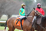 January 24, 2020: Shoplifted with jockey Tyler Gaffalione aboard during the Smarty Jones Stakes at Oaklawn Racing Casino Resort in Hot Springs, Arkansas on January 24, 2020. Justin Manning/Eclipse Sportswire/CSM