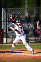 FDU-Florham Devils designated hitter Ben Dranow (42) at bat during the second game of a doubleheader against the Farmingdale State Rams on March 15, 2017 at Lake Myrtle Park in Auburndale, Florida.  FDU-Florham defeated Farmingdale 8-4.  (Mike Janes/Four Seam Images)