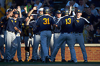Jackson Cramer (13) of the West Virginia Mountaineers is greeted by teammates after hitting a 2-run home run against the Wake Forest Demon Deacons in Game Four of the Winston-Salem Regional in the 2017 College World Series at David F. Couch Ballpark on June 3, 2017 in Winston-Salem, North Carolina. The Demon Deacons walked-off the Mountaineers 4-3. (Brian Westerholt/Four Seam Images)