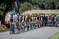Team Bora-Hansgrohe setting the pace in the peloton<br /> <br /> Stage 12 from Chauvigny to Sarran (218km)<br /> <br /> 107th Tour de France 2020 (2.UWT)<br /> (the 'postponed edition' held in september)<br /> <br /> ©kramon