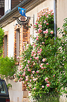 A village house with a giant rose bush and a wrought A wrought iron painted sign that illustrates the theme of champagne and wine production:, the village of Hautvillers in Vallee de la Marne, Champagne, Marne, Ardennes, France