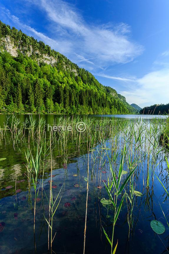 France, Jura (39), Le Franois, lac du Petit Maclu // France, Jura, Le Franois, Petit Maclu lake