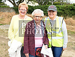 Mary Flood, Maureen Andrews and Caroline Carr at the Mosney Road residents annual street party. Photo:Colin Bell/pressphotos.ie