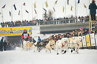 Musher Michelle Phillips in Fairbanks on the Chena River at the start of the 1000 mile Yukon Quest sled dog race 2006, between Fairbanks, Alaska and Whitehorse, Yukon. Dubbed the toughest dogsled race in the world.