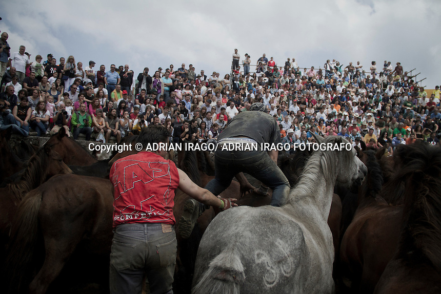 A &quot;aloitador&quot; jumps over a horse durng the Rapa das Bestas de Sabucedo(Galicia) on July 3, 2011. When summertime comes in Galicia (Northwest of Spain), the use of &ldquo;curro&rdquo; begins. A ritual which preserves the free and wild spirit of this region which has remained traditionally tied to nature.<br /> This tradition consists of marking and shaving horses' horsehair from those who live in freedom. It happens in the &ldquo;curros&rdquo;, closed stalls where locals gather the cattle. The most expert breeders, called &ldquo;aloitadores&rdquo;, hold a huge struggle with the horses until these are tamed. They mark them with hot irons to identify the owner and the horsehair is cut for their well-being in the wild. Afterwards they are taken back into the forests where they live.<br /> Sabucedo's Rapa Das Bestas, 40 km from the capital Santiago de Compostela, is the most famous &ldquo;curro&rdquo; in Galicia. Every year more than 500 horses are gathered from Montouto Hills and it features the struggle with bare hands between man and animal. Around Rapa Das Bestas a feast takes place, with tasting of octopus and wine, therefore it turns into an authentic popular festival. &copy; Adri&aacute;n Irago