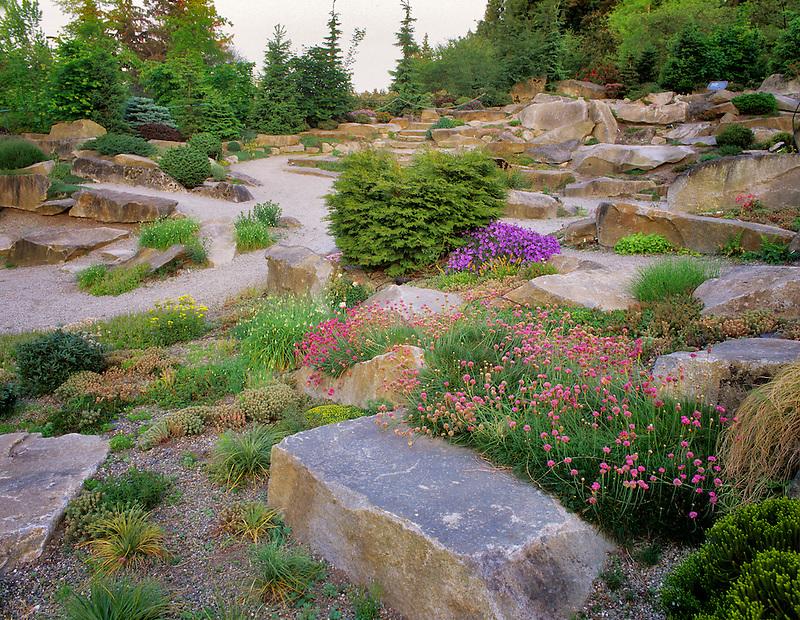 Alpine rock garden.  Bellevue Botanical Garden,  Washington