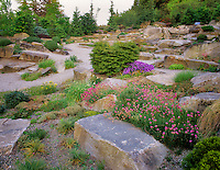 Alpine rock garden.  Bellevue Botanical Garden,  Washington