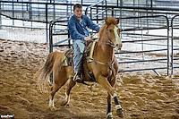 Ranch Sorting Dec 23 2012