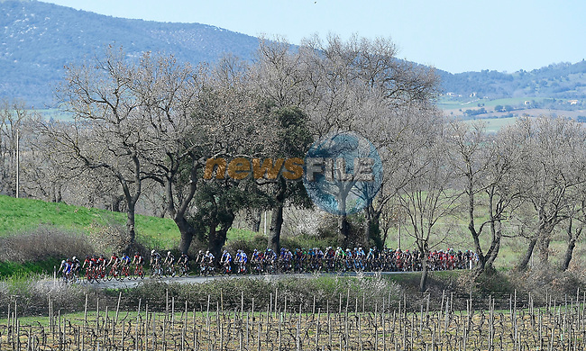 The peloton roll along during Stage 3 of the 2017 Tirreno Adriatico running 204km from Monterotondo Marittimo to Montalto di Castro, Italy. 10th March 2017.<br /> Picture: La Presse/Fabio Ferrari | Cyclefile<br /> <br /> <br /> All photos usage must carry mandatory copyright credit (&copy; Cyclefile | La Presse)