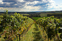 Wine cellars of the South Burgenland vineyards, Rechnitz, Austria