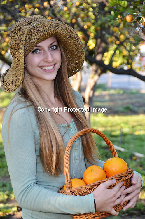 Stock photo of Woman picking oranges