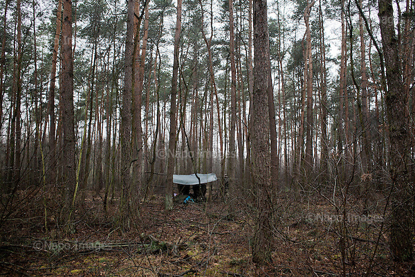 OKOLICE KONINA, 3/2015:<br /> Czlonkowie organizacji &quot;Strzelec&quot; podczas obozu szkoleniowego w lesie. Od rozpoczecia wojny na Ukrainie rozne organizacje paramilitarne staja sie coraz bardziej popularne.<br /> Fot: Piotr Malecki<br /> <br /> FOREST NEAR KONIN, POLAND, MARCH 2015:<br /> A lonely tent during survival training to young cadets in the forest. <br /> Since the start of war in Ukraine, paramilitary associations are becoming more popular.<br /> (Photo by Piotr Malecki)