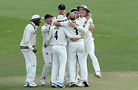 Kent players celebrate taking the wicket of Ravi Bopara during Kent CCC vs Essex CCC, Specsavers County Championship Division 1 Cricket at the St Lawrence Ground on 20th August 2019