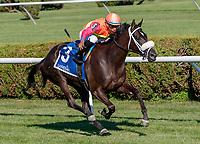 07-20-18 Lake George Stakes (III) Saratoga