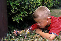 FA36-003z  Child collecting insects, notice food in jar to attract them