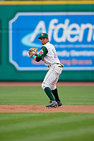 Fort Wayne TinCaps shortstop Reinaldo Ilarraza (12) during a game against the Wisconsin Timber Rattlers on May 10, 2017 at Parkview Field in Fort Wayne, Indiana.  Fort Wayne defeated Wisconsin 3-2.  (Mike Janes/Four Seam Images)
