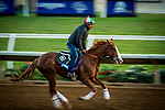 DEL MAR, CA - OCTOBER 27:  Free Drop Billy, owned by Albaugh Family Stables and trained by Dale L. Romans, exercises in preparation for Sentient Jet Breeders' Cup Juvenile at Del Mar Thoroughbred Club on {mothname} 27, 2017 in Del Mar, California. (Photo by Alex Evers/Eclipse Sportswire/Breeders Cup)