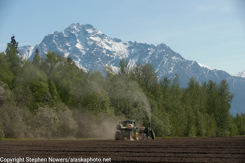 Matanuska Valley farmer Ben Vanderweele plants potatoes in a field off Outer Springer Loop near Palmer, Alaska, on Friday, May 27, 2011.
