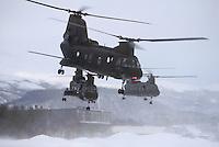 - transport helicopters CH 46 of the US Marines during NATO exercises in Norway ....- elicotteri da trasporto CH 46 degli US Marines durante esercitazioni NATO in Norvegia