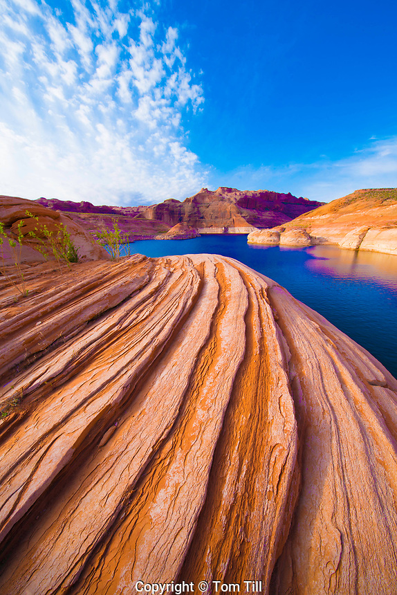 Rock forms at Reflection Canyon, lake Powell, Glen Canyon National Recreation Area, Utah