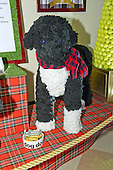 """Larger than life replica of the Obama family dog Bo in the East Garden Room / Booksellers as part of the 2015 White House Christmas theme """"A Timeless Tradition"""" at the White House in Washington, DC on Wednesday, December 2, 2015. <br /> Credit: Ron Sachs / CNP"""