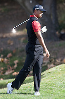 December 4, 2011: Tiger Woods during the final round of the Chevron World Challenge held at Sherwood Country Club, Thousand Oaks, CA.