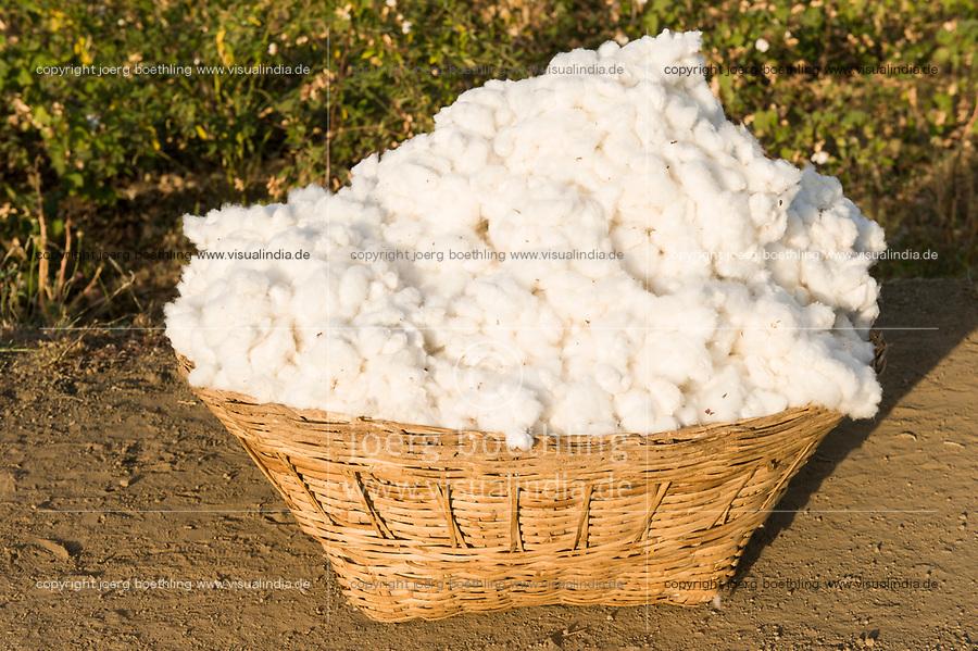 """Südasien Asien Indien IND Madhya Pradesh Khargone , Kooperative Shiv Krishi Utthan Sanstha vermarktet fairtrade und Biobaumwolle von Adivasi Farmern , wird verarbeitet fuer armed angels, C&A und andere<br />  -  Landwirtschaft Baumwolle xagndaz   <br /> South Asia India Madhya Pradesh Khargone , tribal farmer of cooperative Shiv Krishi Utthan Sanstha produce fairtrade and organic cotton<br />   -  agriculture  <br />   [ copyright (c) Joerg Boethling / agenda , Veroeffentlichung nur gegen Honorar und Belegexemplar an / publication only with royalties and copy to:  agenda PG   Rothestr. 66   Germany D-22765 Hamburg   ph. ++49 40 391 907 14   e-mail: boethling@agenda-fototext.de   www.agenda-fototext.de   Bank: Hamburger Sparkasse  BLZ 200 505 50  Kto. 1281 120 178   IBAN: DE96 2005 0550 1281 1201 78   BIC: """"HASPDEHH"""" ,  WEITERE MOTIVE ZU DIESEM THEMA SIND VORHANDEN!! MORE PICTURES ON THIS SUBJECT AVAILABLE!! INDIA PHOTO ARCHIVE: http://www.visualindia.net ] [#0,26,121#]"""