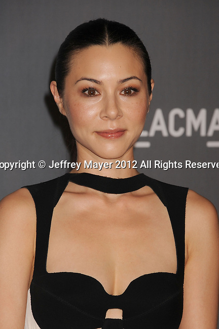 LOS ANGELES, CA - OCTOBER 27: China Chow arrives at LACMA Art + Film Gala at LACMA on October 27, 2012 in Los Angeles, California.