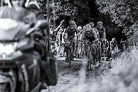 Stijn Devolder (BEL/Veranda's Willems-Crelan) leads the peloton on a gravel section<br /> <br /> 2nd Dwars door het Hageland 2017 (UCI 1.1)<br /> Aarschot &gt; Diest : 193km